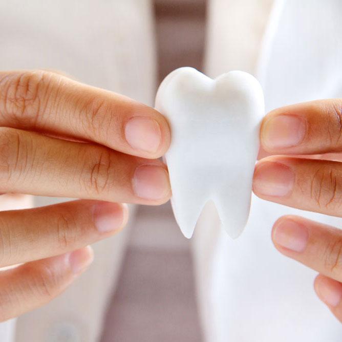 Dr. Scheufele Zahnarzt in Puchheim